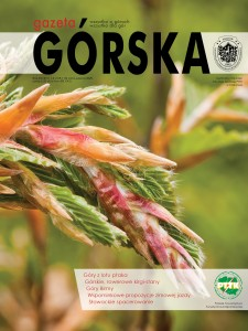 GG zima-wiosna 109-110 okładka pół